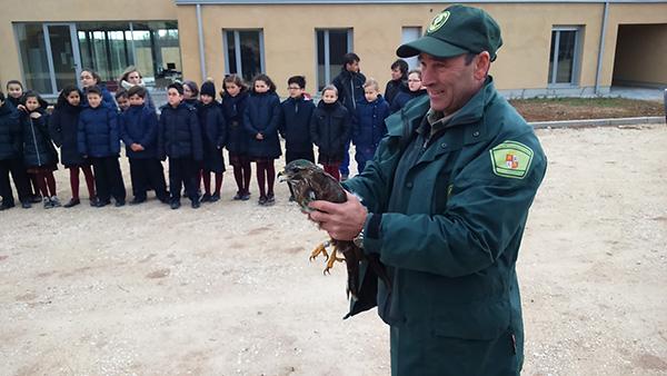Los centros de Recuperación de Animales Silvestres de Castilla y León atienden a 14.800 animales