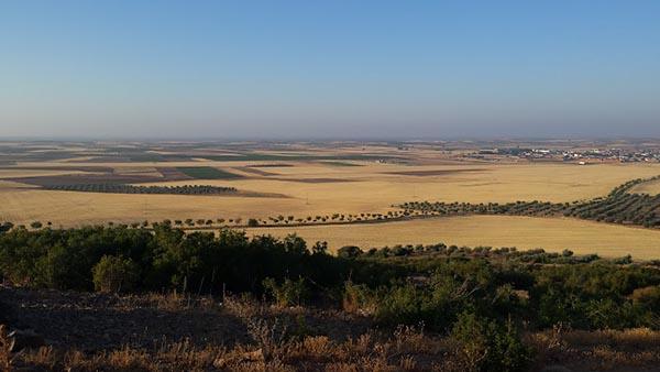 ASAJA Soria respalda una norma conjunta para garantizar un equilibrio en las prácticas agrarias