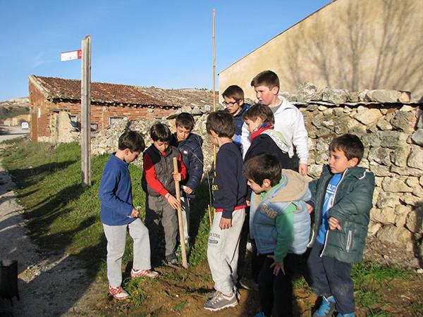 Los niños plantan olmos en Miño de San Esteban de Gormaz