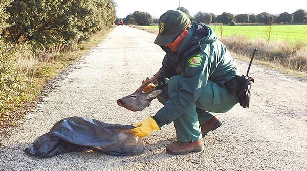 La Junta intensifica los controles en la temporada de caza y de pesca