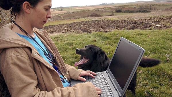 Casi ocho de cada diez castellano-leoneses utiliza Internet