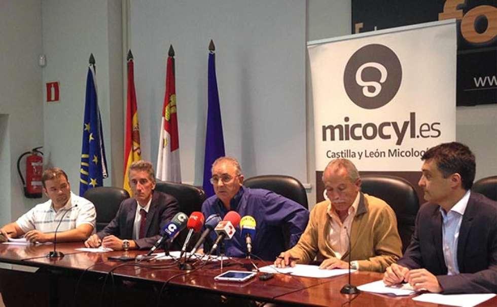 La UGAM Montes de Soria confía en el decreto de la Junta para frenar el furtivismo micológico