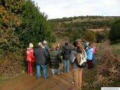 El acebal de Garagüeta recibe 20.000 visitantes al año