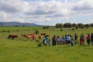 Correos y ASFOSO celebran jornadas escolares de educación medioambiental
