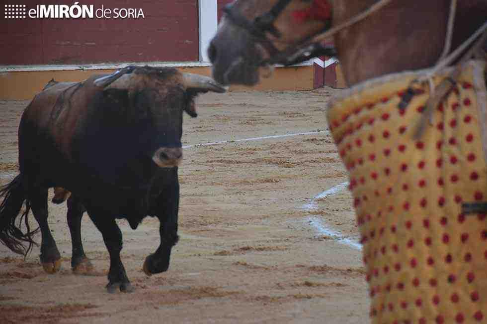 Desierto el trofeo XXXII Celtiberia al mejor toro
