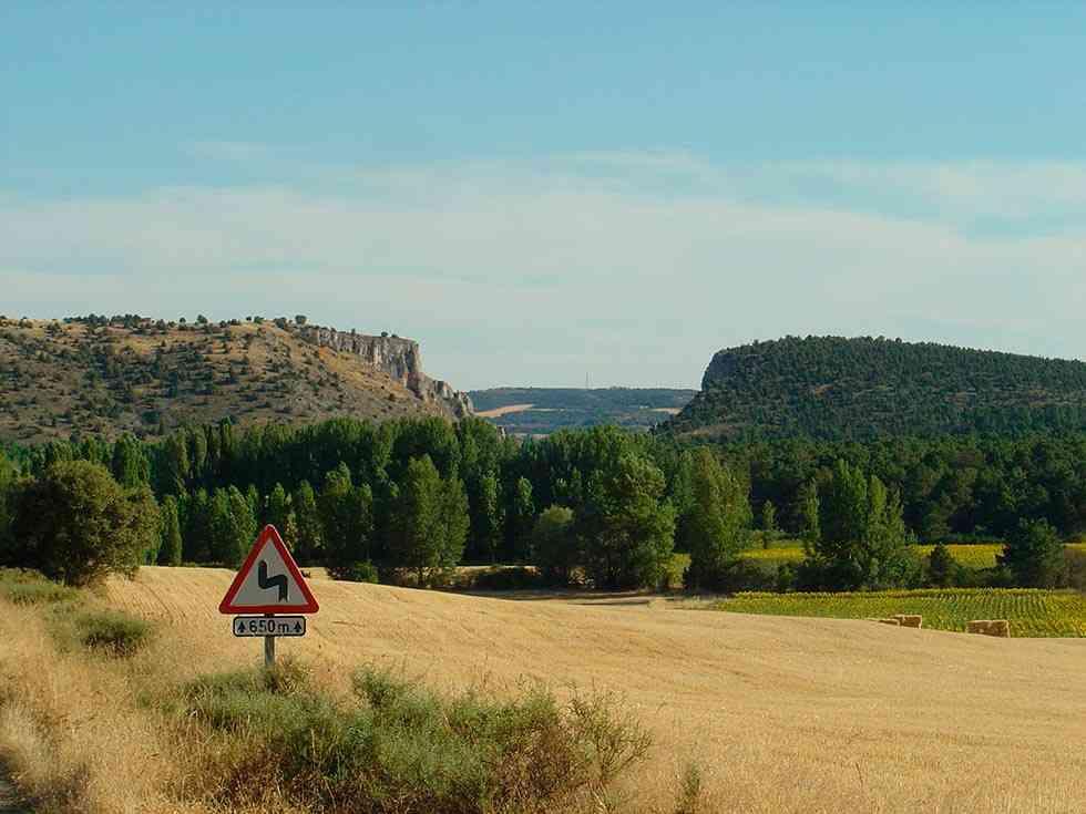 Presentadas alegaciones contra la granja porcina de Andaluz