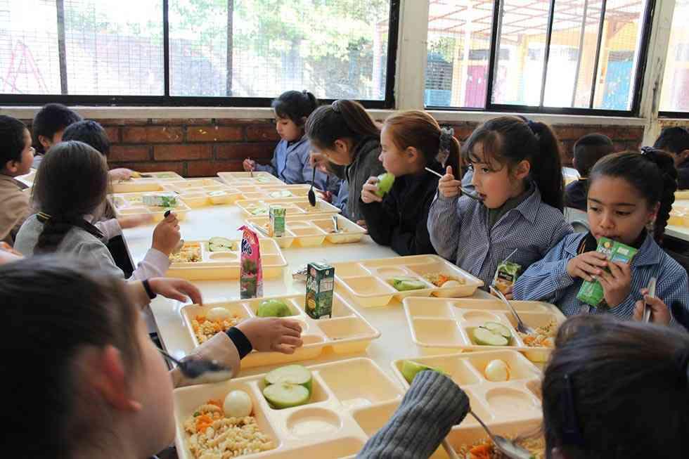 Educación aclara que no se sirve aceite de palma en comedores escolares