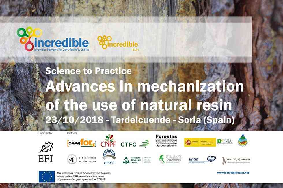 Tardelcuende analiza los retos de la innovación en mecanización de resinación