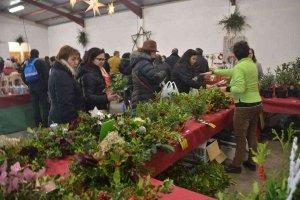 Oncala celebra su XI Feria del Acebo y adorno navideño