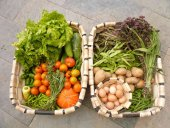 La cesta de la compra ecológica es el doble de cara que la normal