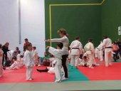 Campeonato regional de Edad y provincial de judo