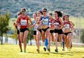 La Junta convoca los Premios a la excelencia deportiva