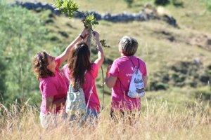 Más de cien actividades en el programa de Voluntariado Ambiental