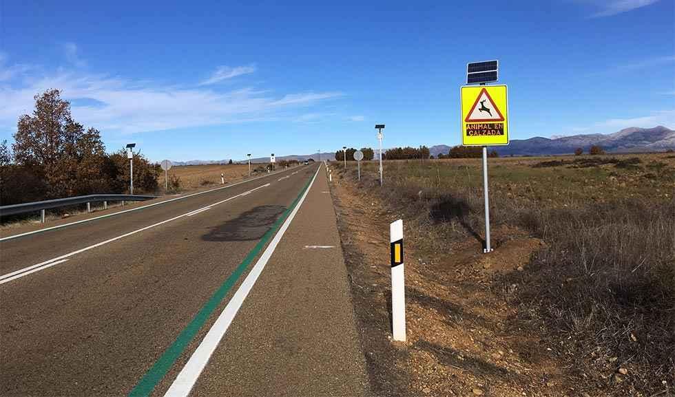 Un sistema reduce los accidentes con animales en las carreteras
