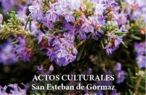 Actividades culturales en la Semana Santa de San Esteban de Gormaz