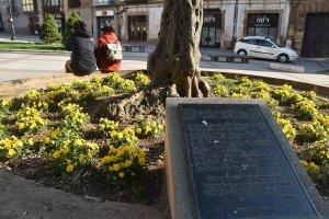 El 9º Encuentro Intergubernamental de la Dieta Mediterránea, en Soria