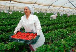 La mujer representa el 54 por ciento de emprendimiento en medio rural