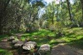 Las Casas del Parque siguen creciendo en visitantes