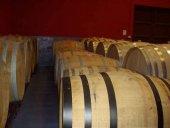 Cata de vinos aragoneses en el Casino Amistad
