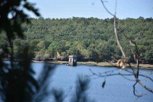Presupuesto de las ayudas forestales del PDR 2014-2020